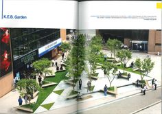 plaza, planter, seating, edge