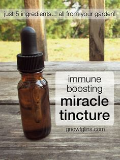 My Go-To, All-Things-Sick-Related Tincture: just five ingredients! - Whole Intentions