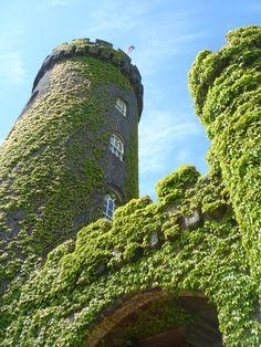 swinton park - rapunzel's tower