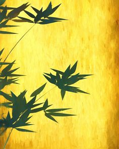 Bamboo Leaves on Golden Background, Digital painting, Decoration, Printable, Download. #digitalpaintings #digiart #art #digitalprintings #paintings #decoration #digitalart Digital Prints, Digital Art, Golden Background, Bamboo Leaves, Backgrounds, Painting, Watercolor, Drawing, House