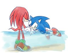 """Awws look at poor Sonic... and Knuckles is over here probably thinking """"this is so sad"""""""