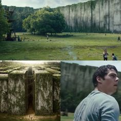 """The Maze Runner Movie """" inside the glade """" This is exactly how I pictured it!"""