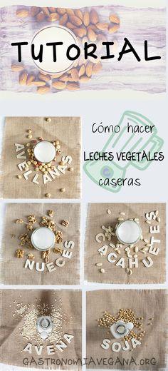 Tutorial: cómo hacer leches vegetales caseras