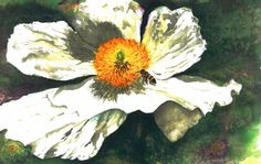 Bee At Work Flower Print From My Original by KarlynnsArtfulGifts