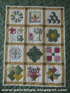 sampler patchwork - Buscar con Google Colchas Country, Barn Quilt Patterns, Work Project, Flower Quilts, Sampler Quilts, Block Of The Month, Applique, Quilting, Blanket