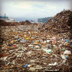 miyagi 海岸部は、瓦礫の山。でもこれを船に積んで、運ぶことのほうが大変。近くに埋めるとか、焼却場を作る方が、地元にお金が落ちるし、合理的だと思う。