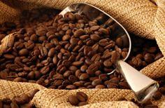 La ruta del buen #cafe en #Mexico: #Veracruz #Oaxaca #Chiapas