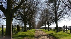 A bucolic stroll along the path to Houghton House, Ampthill. Houghton House, Paths