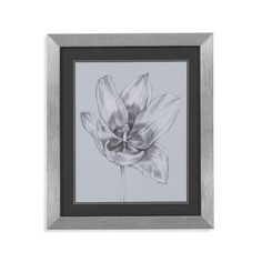 Bassett Mirror Silvery Blue Tulips II Framed Painting Print