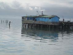 Isola di Pellestrina - i migliori consigli prima di partire - TripAdvisor