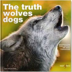 The Truth About Wolves and Dogs: Dispelling the Myths of Dog Training Cesar Millan, Brown Bear, Animal Kingdom, Dog Training, Lions, My Books, Terrier, Wolf, Cute Animals