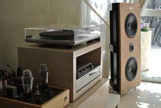 "'Timeless' - 10"" Open Baffle Speaker Born in Public: part 1 - PureAudioProject"