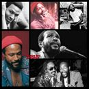 "Marvin Gaye, born Marvin Pentz Gay, Jr., was a singer-songwriter and musician. Gaye helped to shape the sound of Motown Records in the 1960s with a string of hits including ""How Sweet It Is (To Be Loved By You)"" and ""I Heard It Through the GR*pedvine"" and duet recordings with Mary Wells and Tammi Te...Marvin Gaye, born Marvin Pentz Gay, Jr., was a singer-songwriter and musician. Gaye helped to shape the sound of Motown Records in the 1960s with a string of hits including ""How Sweet It Is (To…"