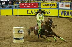 ❦ Fallon Taylor at the NFR - Team Fallon! Barrel Racing Quotes, Barrel Racing Horses, Barrel Horse, Equine Quotes, Fallon Taylor, Rodeo Life, Cowgirl And Horse, Western Outfits, Horse Stuff