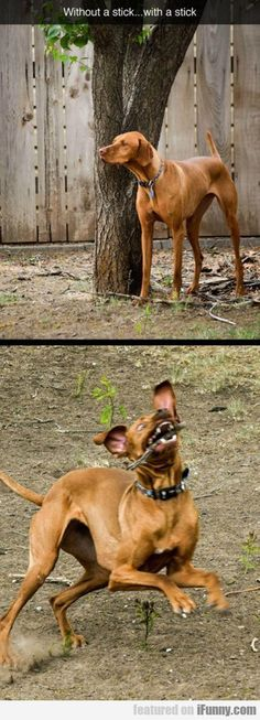 sticks make all the difference