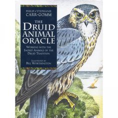 The Druid Animal Oracle - CARDS, CLOTH & BOOK SET - Animal Oracle Cards