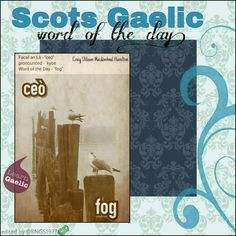 Scottish Gaelic Phrases, Scottish Words, Gaelic Words, Celtic Music, Word Of The Day, Foreign Languages, Outlander, Scotland, Irish
