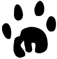 lion-paw-print