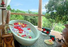 Costa Rica Travel Guide , Costa Rica Hotels and Resorts