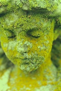Moss Covered Outdoor Statue.