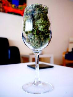 This man created a sommelier-type program for dissecting, grading marijuana - Hemp News Cannabis News from Hoban Law Group Puff And Pass, Cbd Oil For Sale, Smoking Weed, Ganja, Hemp Oil, Medical Marijuana, Marijuana Facts, Napa Valley, Mary Janes