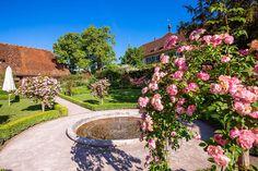 Kartause Ittingen Sidewalk, Hotels, Germany, Switzerland, Lawn And Garden, Side Walkway, Walkway, Walkways, Pavement