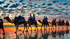 Private Day Trip to Essaouira from Agadir | Morocco Excursions
