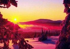 Marraskuu Finland, November, Celestial, Sunset, Winter, Garden, Painting, Outdoor, Art