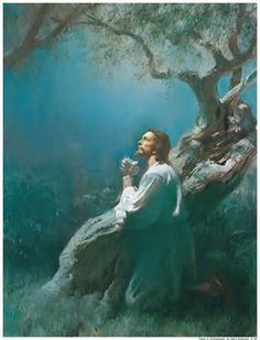 Jesus in the Garden of Gethsemane on the Mount of Olives. He was in such agony of prayer that the Bible says his sweat was as drops of blood. An angel came to comfort Jesus. He was in that much agony, and yet the Lord Jesus went through with all of it. Images Du Christ, Pictures Of Jesus Christ, Arte Lds, Image Jesus, Lds Art, Jesus Christus, Holy Week, God Jesus, Jesus Our Savior