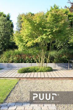 Back Gardens, Small Gardens, Outdoor Gardens, Landscape Architecture, Landscape Design, Outside Living, Plantation, Garden Spaces, Water Garden