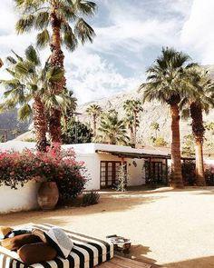 Desert Vacation Hotel In Desert