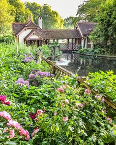A beautiful summer garden with pink and purple flowers in St James's Park, London, England. Secret Places In London, London Places, London England Travel, London Travel, British Holidays, Visit Britain, British Travel, London Blog, Holiday Lettings