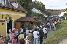 Kellergassenfest in Rohrendorf.  #weinherbst #kellergassen #niederoesterreich  Copyright: Weinstraße Niederösterreich / Wolfgang Simlinger