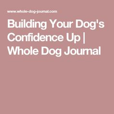Building Your Dog's Confidence Up | Whole Dog Journal