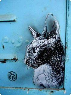 sphinx cat stencil graffiti street art C215