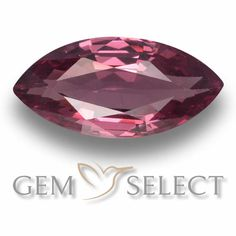 GemSelect features this natural untreated Rhodolite Garnet from Mozambique. This Red Rhodolite Garnet weighs 1.2ct and measures 9.9 x 4.7mm in size. More Marquise Facet Rhodolite Garnet is available on gemselect.com  #birthstones #healing #jewelrystone #loosegemstones #buygems #gemstonelover #naturalgemstone #coloredgemstones #gemstones #gem #gems #gemselect #sale #shopping #gemshopping #naturalrhodolitegarnet #rhodolitegarnet #redrhodolitegarnet #marquisegem #marquisegems #redgem #red