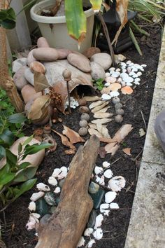 Fairy play outdoor space at This Little Family Daycare ≈≈ Outdoor Learning Spaces, Cute Garden Ideas, Small World Play, Outdoor Classroom, Garden Care, Outdoor Areas, Natural Materials, Garden Design, Backyard