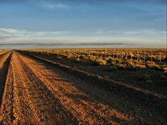 Road to Shamán
