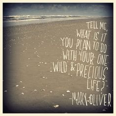 """""""Tell me, what is it you plan to do with your one wild & precious life?"""" - Mary Oliver"""