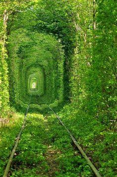 Túnel del amor abandonado..