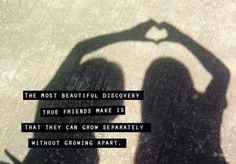 Quotes On True Friendship And Distance  The Friendship Page Friendship Quotes General