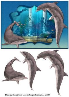 Ocean Dolphins on Craftsuprint designed by Aisne Smith - An A5 card front featuring dolphins with decoupage pieces to enhance the overall card. - Now available for download!