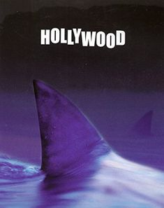 Shark Tail with Hollywood Sign Picture Ocean Wall Decor A…