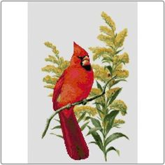 State Symbols in Cross Stitch - Kentucky Northern Cardinal and Goldenrod #Kentucky