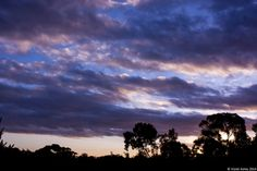 {Sunsets} Sunset 57 26th February 2014 © Violet Ashes 2014 #CanonEOS450D #sunset #sky #VioletAshes #Adelaide #SouthAustralia #Australia