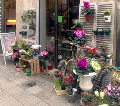 A Spanish Floral Sop with wonderful use of shutters!