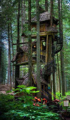 Three Story Treehouse em Colúmbia Britânica, Canadá