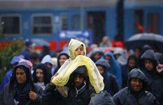 Швейцарского политика оштрафовали за помощь мигрантам