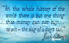 So true! Used as the opening quote in 'Lady and the Tramp'