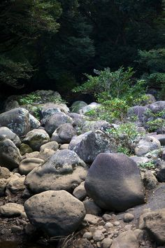 Jeju island - Dry river - photo Camille Goutal